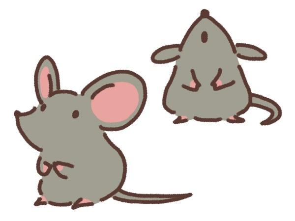 東京都中野区 屋根 雨漏り点検 害獣被害 ネズミ対策 (1)