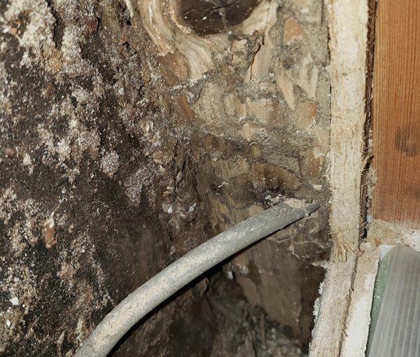東京都杉並区 屋根葺き替え工事 シロアリ 雨漏り (1)
