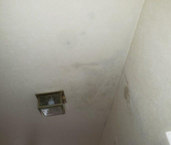 東京都世田谷区 屋根葺き替え工事 外壁塗装 クロス張替え 雨漏り (3)
