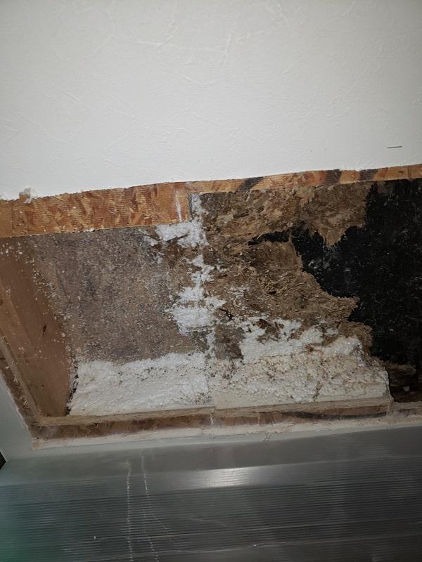 東京都中野区 屋根葺き替え工事 雨漏り コロニアル屋根の劣化 (2)