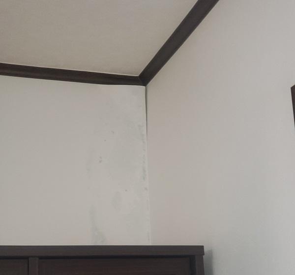 東京都中野区 外壁塗装・屋根改修工事 事前調査 雨漏り (1)