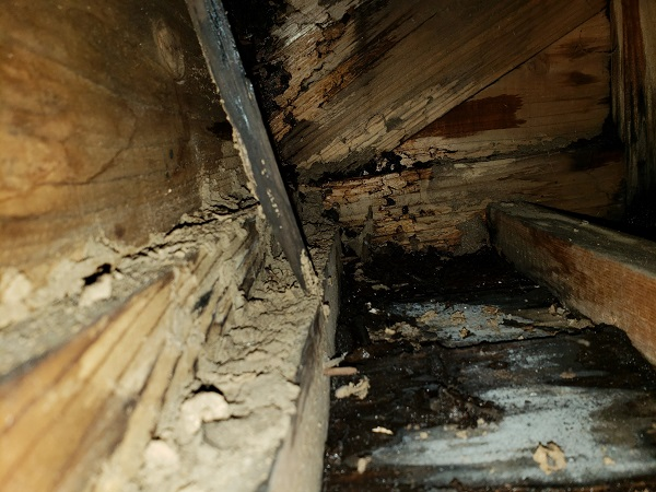 東京都中野区 屋根葺き替え工事 外壁塗装 雨漏り (1)