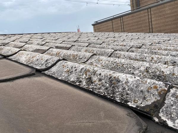 東京都中野区 屋根葺き替え工事 施工前の屋根の状態 無料調査 屋根のリフォーム方法 (4)