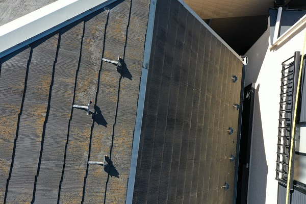 東京都中野区 屋根塗装 現場調査② カビの恐ろしさ 急勾配の屋根5