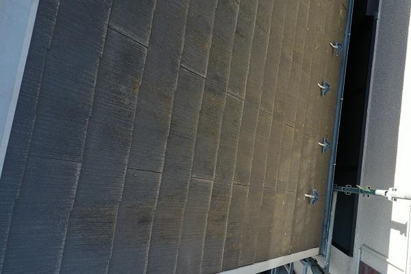 東京都中野区 屋根塗装 現場調査② カビの恐ろしさ 急勾配の屋根