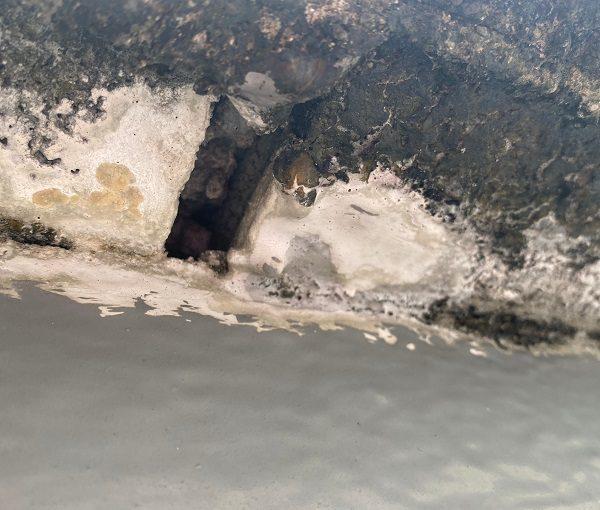 東京都世田谷区 Mビル 防水工事 屋上の劣化状況 天窓からの雨漏り (4)