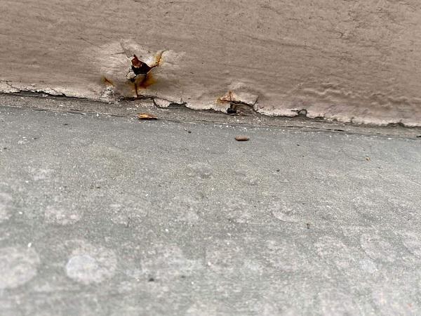 東京都大田区 アパート 屋根塗装・外壁塗装 施工前の状態 (27)